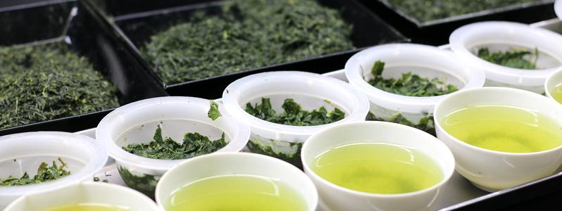 Ujicha Tea