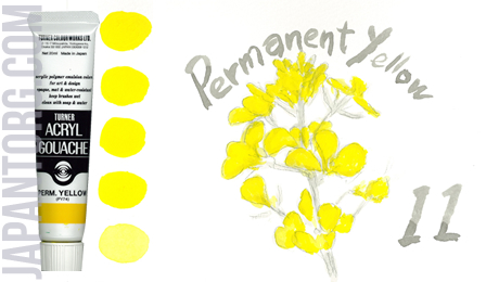 ag-11-permanent-yellow