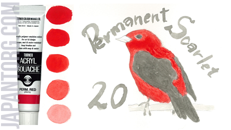 ag-20-permanent-scarlet