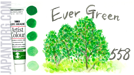 ac-558-ever-green