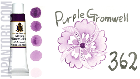 wc-362-purple-gromwell